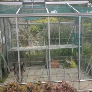 Our new (to us) greenhouse
